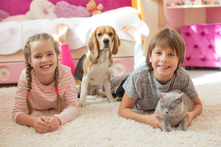 A boy and a girl laying on clean carpet accompanied by a dog and a cat