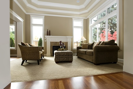 Furnished living room with carpet, a sofa, chairs, and a wood floor entry